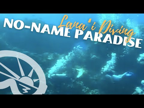 """No Name Paradise"" dive site off Lanai - with Extended Horizons Scuba, Maui, Hawaii"