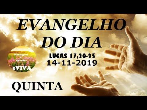 EVANGELHO DO DIA 14/11/2019 Narrado e Comentado - LITURGIA DIÁRIA - HOMILIA DIARIA HOJE