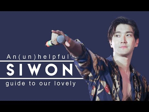 An (un)helpful guide to Choi Siwon