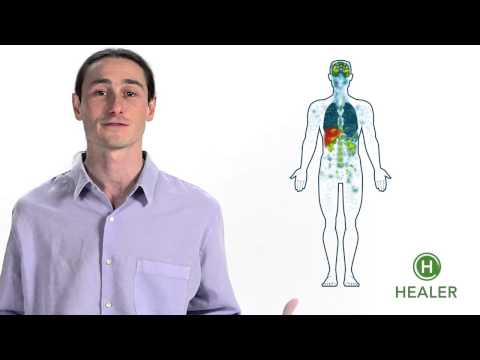 Your Endocannabinoid System Explained