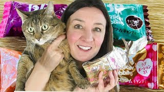 Japanese Candy Baskin Robbins and Cat Treats Taste Test