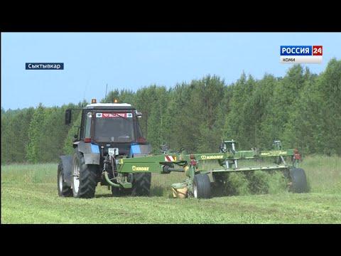 Аграрии Коми приступили к заготовке кормов