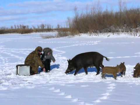 Случай на зимней рыбалке