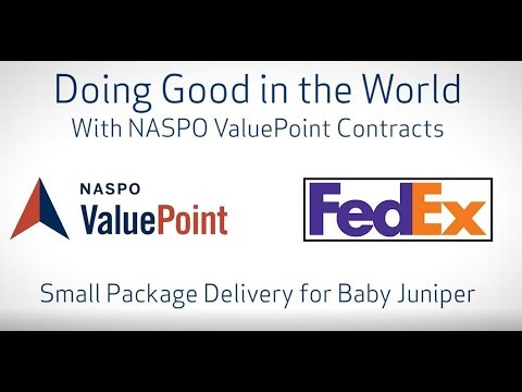 Small Package Delivery for Baby Juniper Preview