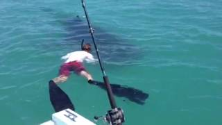 Pearson Brothers Winery tries to Swim with the Sharks!