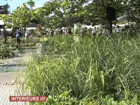 Normandie : Stéphane Marie, Jardin de la Maubrairie - WEBTV ...