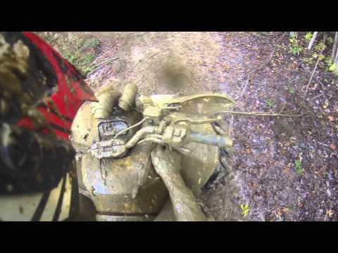 Mud Slangers   Renegade Rippin' WOT