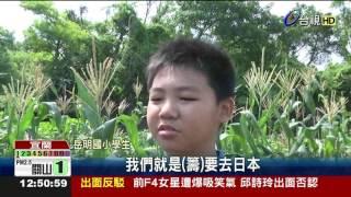 岳明国小自种玉米义卖学童筹旅费访日