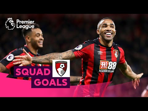Brilliant AFC Bournemouth Goals | Wilson, Brooks, King | Squad Goals