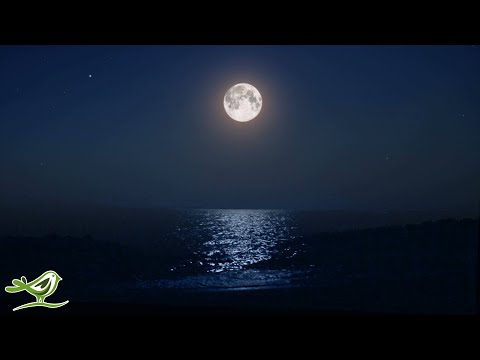 Deep Sleep Music: Ocean Waves, Fall Asleep Fast, Relaxing Music, Sleeping Music ★138