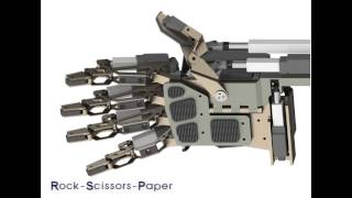 RMSM (Robot Manipulation System Module)