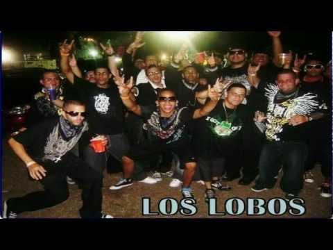 LOS LOBOS ANDAN SUELTOS - ÑENGO FLOW andamp; LOS LOBOS.mp4
