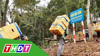 Đề nghị xác minh xử lý trách nhiệm để xảy ra buôn lậu tại Lạng Sơn | THDT