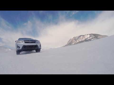 Subaru Trailer