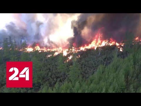 Маршрут сквозь дымовую завесу: как регионы борются с лесными пожарами