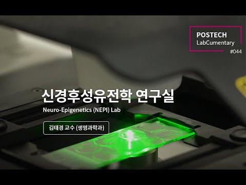 신경후성유전학 연구실 (Neuro-Epigenetics (NEPI) Lab)
