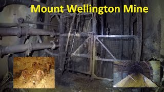 Mount Wellington Tin Mine, underground workings. Sadly no longer accessible to explore.(Old footage)