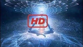 Bbc Documentary 2017 Watch Forbidden Science | National Geographic Documen science documen