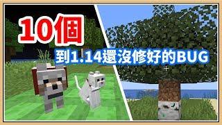 【Minecraft】10個在1.14還沒修好的奇怪BUG!貓狗高速震動💥