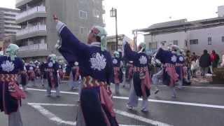 よさこい東海道2013 本祭【本町審査会場】上総組