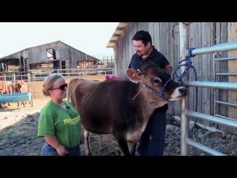 Spokane Family Farm