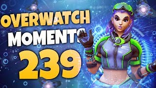 Overwatch Moments #239