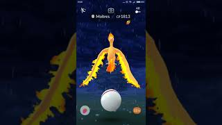 POKEMON GO: 3IN1 Raid Moltres(Sky Attack)