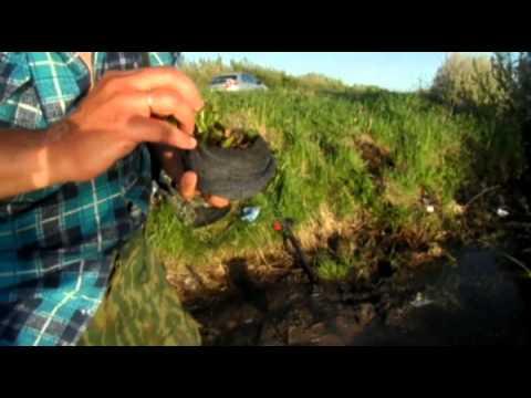 Метод длительного хранения червей для рыбалки