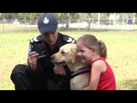 A dog handler: that could be me