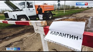 В деревне Нахимовка Называевского района обнаружено бешенство у крупного рогатого скота