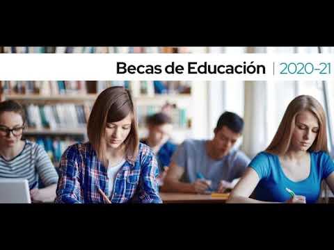Apartado H: Datos académicos curso 2020-21(universidad)
