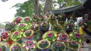TP Vinh: Sôi động thị trường hoa ngày 20.10