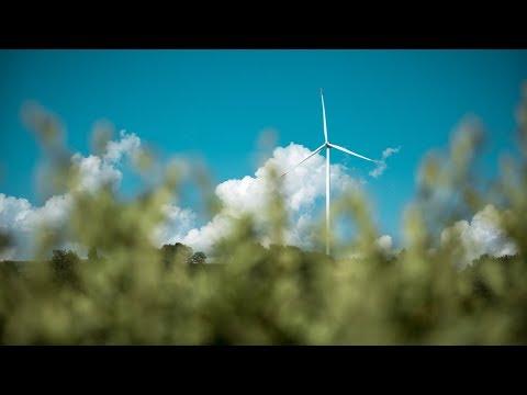 Årets billigste strømuke // Entelios kraftkommentar 24