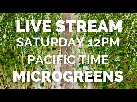 LIVE STREAM -Microgreens Saturday 12PM Pacific Time
