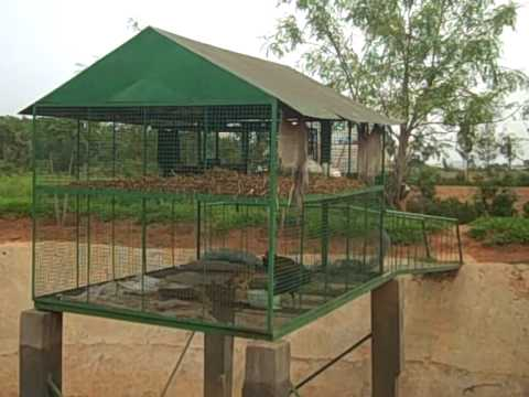 Farm ponds, water harvesting structures in dryland