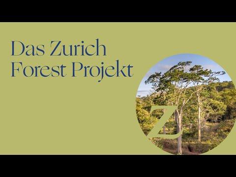 """Das Projekt """"Zurich Forest"""""""