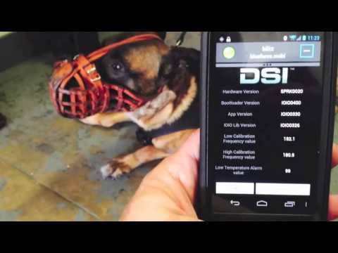 Blueforce and DSI K9 Life Safety