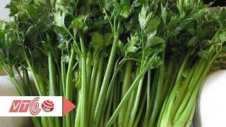 Cần tây: Thực phẩm vàng cho người cao huyết áp | VTC
