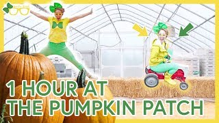 1 Hour of Videos For Toddlers | Brecky Breck At The Pumpkin Patch
