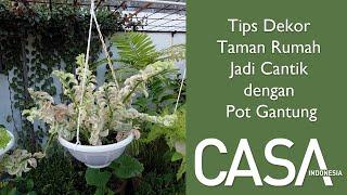Tips Percantik Taman Rumah Pakai Pot Gantung #CASAHacks #CASAIndonesiaTips