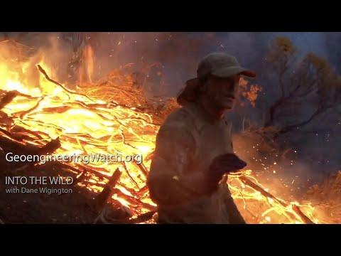 Hinein in die Wildnis / Geoengineering: Feuer und Eis