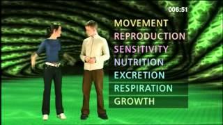 7 Characteristics of Life - Mrs Gren - Mrs Nerg - BBC Curriculum Bites
