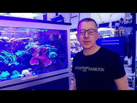 Video Q2vrInAHdCY