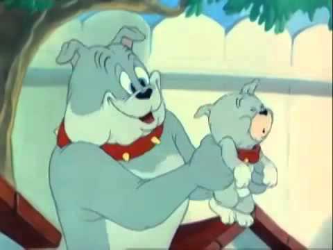 Tom Und Jerry Spike Sohn