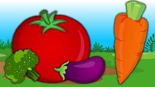 bài hát thực vật | trẻ em bài hát | vần cho trẻ em | Vegetable Song | Learn Vegetables | Baby Song