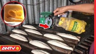 Chất độc hại có trong bánh mì nóng giòn ít ai ngờ tới   An toàn sống   ANTV