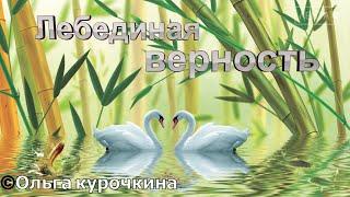 Встреча с искусством. Ольга Курочкина