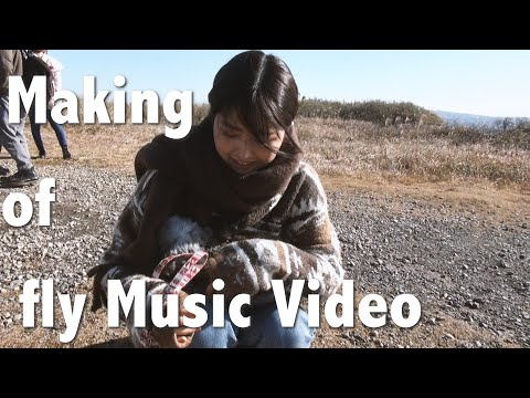 Making of fly Music Video