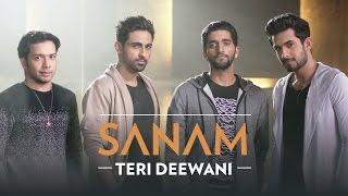 Teri Deewani – Sanam Ft Sandeep Thakur Video HD