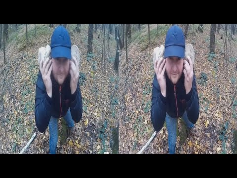 3D-MAN in the Autumn forest ! POSITIVE IN 3D!